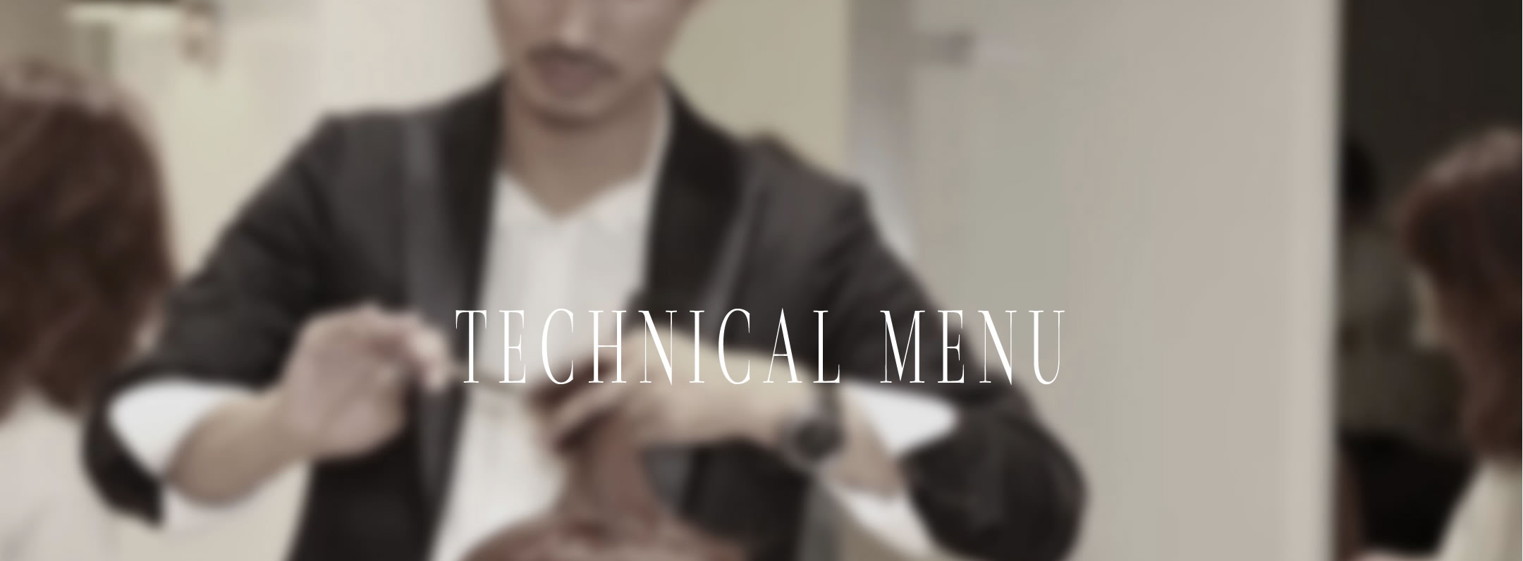 TECHNICAL MENU